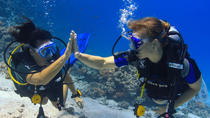 2 dives from a comfy boat for Certified Divers, Hurghada, Scuba Diving