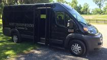 11 Passenger Executive Van: New Orleans Airport or Hotel Transfer, New Orleans, Bus & Minivan Tours