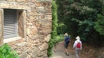 Douro Valley Hike, Porto, Hiking & Camping
