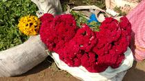 Morning tour of Kolkata with Flower Market, Kolkata, Day Trips