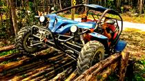 Jungle Buggy Tour from Playa del Carmen, Playa del Carmen