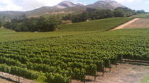 Private Cape Winelands Guided Day Tour from Stellenbosch, Franschhoek or Paarl, Stellenbosch, ...
