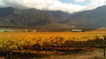 Private Shore Excursion: Cape Winelands Tour from Cape Town, Cidade do Cabo