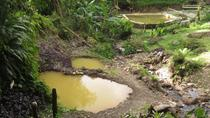 Dominica Half-Day Tour: Mero Beach, Salton Waterfalls, Wotten Waven and Ti Kwen Glo Cho, Dominica, ...