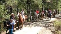 Horse Safari to Ancient Syedra, Alanya, Horseback Riding