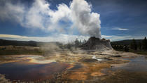 Yellowstone Lower Loop Tour, Yellowstone National Park, Full-day Tours