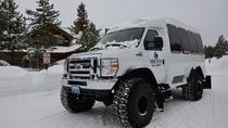 Yellowstone Old Faithful Snowcoach Tour, Yellowstone National Park, Nature & Wildlife