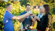 VIP Private Wine Tour with Lunch in Hershey from Lancaster, Lancaster, Wine Tasting & Winery Tours