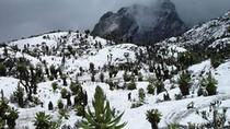 12 Day Rwenzori Trek with Safari , Kampala, Multi-day Tours