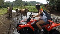 ATV Tour, Playa Hermosa, 4WD, ATV & Off-Road Tours