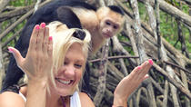 Mangrove Monkey Tour, Playa Hermosa, Nature & Wildlife