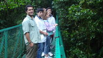 Monteverde Cloud Forest Tour, Playa Hermosa, Nature & Wildlife