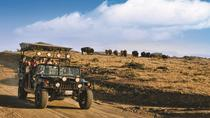 Catalina Island Cape Canyon Expedition, Catalina Island, 4WD, ATV & Off-Road Tours