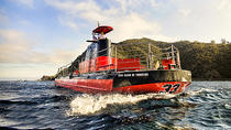Catalina Island Undersea Expedition, Catalina Island, Submarine Tours