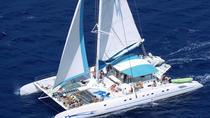 Saona Paradise Island Speedboat and Catamaran Excursion, Punta Cana, Day Cruises