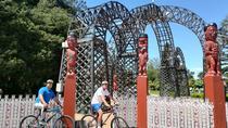 Cycle with Maori, Rotorua, City Tours