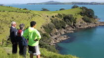 Maori Walking Tour with Wine Tasting on Waiheke Island, Auckland