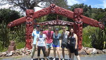 Walking and Biking Tour on Waiheke Island, Auckland, Walking Tours