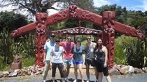 Walking and Biking Tour on Waiheke Island, Waiheke Island, Walking Tours
