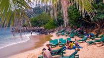 Weligama, Jungle Beach, Galle, and Turtle Project Private Tour from Colombo, Colombo, Day Trips
