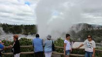 Tauranga Shore Excursion: Maori Culture, Kiwis, and Geo-Thermal Valleys in Tauranga, Tauranga,...