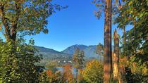 Stanley Park Rainforest Nature Tour and Meditation Workshop, Vancouver, Nature & Wildlife