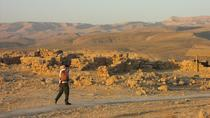 Dead Sea and Masada Private Tour from Tel Aviv, Tel Aviv, Private Sightseeing Tours