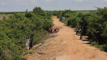 Countryside Motorbike Tour from Siem Reap, Siem Reap, Motorcycle Tours
