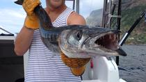 4h Half-Day Private Coastal Fishing, Ponta Delgada