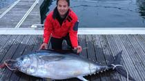 Half-Day Big Game Fishing, Ponta Delgada, Fishing Charters & Tours