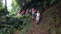 Walking Tour - Sanguinho, Ponta Delgada, Walking Tours