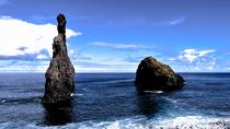 Full-Day Small-Group Guided West Madeira Tour from Funchal
