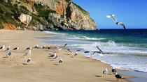 Sesimbra and Arrábida Natural Park Full Day Private Tour from Lisbon, Lisbon, Private Sightseeing...