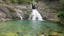 Discover Serra De Arga Nature Paradise and Pincho Waterfall, Porto