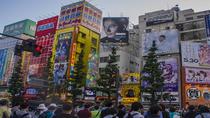 Akihabara Walking Tour with Samurai Cosplayer, Tokyo, City Tours