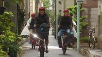 Electric-Powered Biking Tour: Asakusa, Roppongi, Akihabara, and Imperial Palace, Tokyo, Bike &...