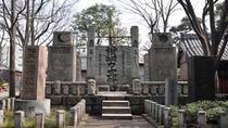 Experience Edo Tokyo Walking Tour, Tokyo, Full-day Tours