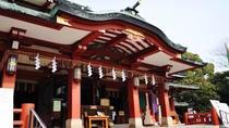 Experience Edo Tokyo Walking Tour