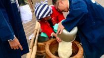 Explore Tohoku - Experience Mochi Making and See Local Life in Ichinoseki, Tohoku, Day Trips