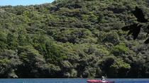 Kayaking the Anbo River in Yakushima