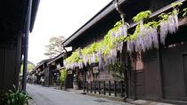 Private Custom Full-Day Tour of Shirakawa-go from Takayama
