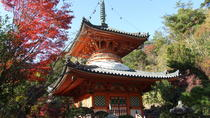 Private Customized Sightseeing Tour in Hiroshima with a Guide, Hiroshima, Day Trips