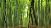 Private Kyoto Arashiyama Custom Half-Day Tour by Chartered Vehicle, Kioto
