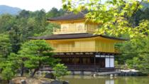 Private Kyoto Custom One Day Tour by Chartered Vehicle, Kyoto, Hop-on Hop-off Tours