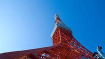 Private Tokyo Custom Full-Day Tour by Chartered Vehicle, Tokyo, Bike & Mountain Bike Tours