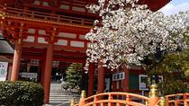 Seasonal Tour: Kyoto Cherry Blossom Viewing Tour by Bus, Kyoto