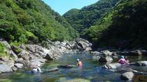 Stream Climbing Experience in Yakushima, Kagoshima, Climbing