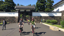 Tokyo Biking Tour by Electric-Powered Bike, Tokyo, Bike & Mountain Bike Tours
