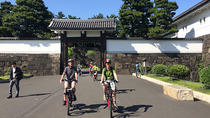 Tokyo Cycling Tour by Electric Assist Bike, Tokyo, Bike & Mountain Bike Tours