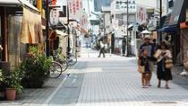 Tokyo Sunamachi Ginza Shotengai and Depachika Half-Day Walking Tour with a Guide, Tokyo, Shopping...
